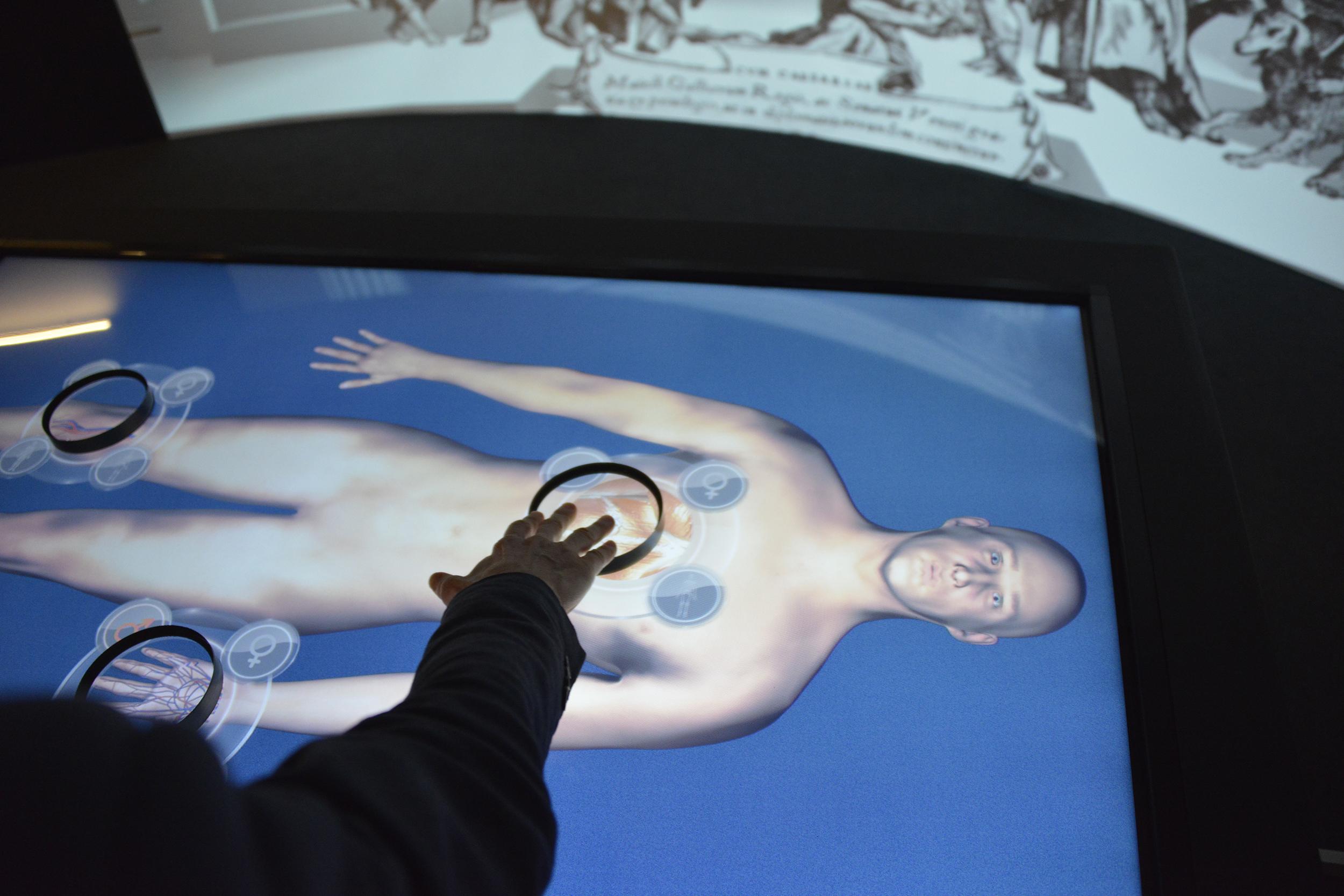 MUSME - MUSEO DI STORIA DELLA MEDICINA IN PADOVA