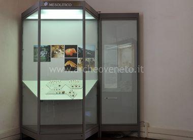 MUSEO NATURALISTICO ARCHEOLOGICO DI VICENZA