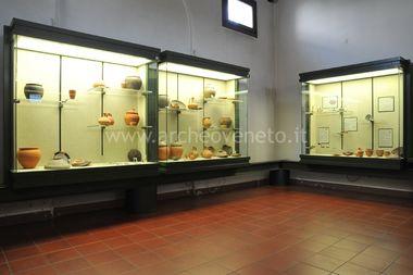MUSEO DI STORIA NATURALE E ARCHEOLOGIA DI MONTEBELLUNA