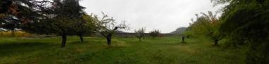 Giardino di Villa Angarano, Formenti, Molin, Molin Gradenigo, Gradenigo, Pisani Michiel, Michiel, Bianchi Michiel