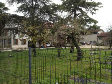 Barchessa Contarini, Formilan