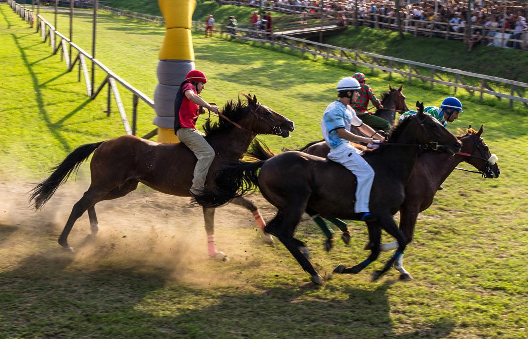 Palio dei 10 Comuni del Montagnanese - gara equestre -  Associazione Palio dei 10 Comuni del Montagnanese