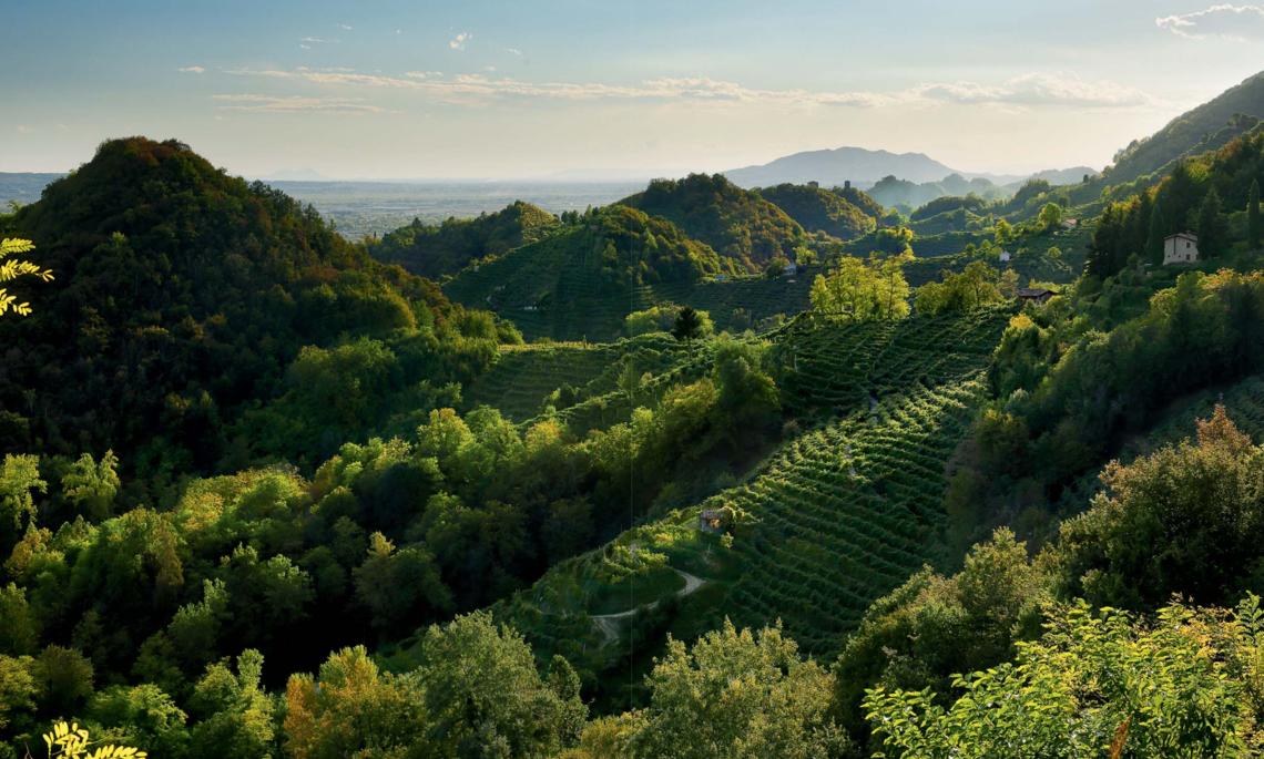 Colline di Conegliano e Valdobbiadene - Crediti: Dossier candidatura UNESCO