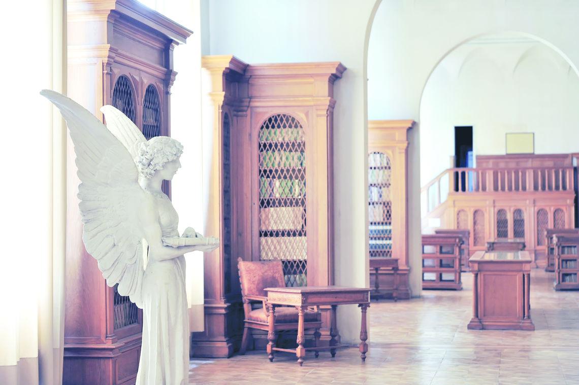 Biblioteca Cameriniana -  A.Dell'Agnola 2009