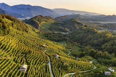 Patrimonio UNESCO: le Colline del Prosecco di Conegliano e Valdobbiadene
