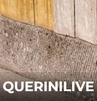 QueriniLive
